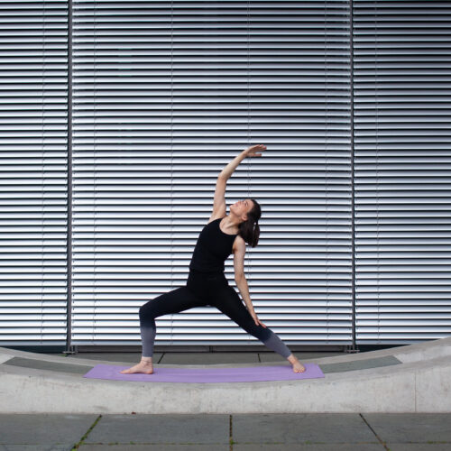 In diesem festen Kurs baust du gemeinsam mit anderen Anfängern in einer kleinen Gruppe Schritt für Schritt die Yogapraxis auf, so dass du dich danach in offenen Stunden im Studio sicher aufgehoben fühlst. Der Kurs ist auch für dich geeignet, wenn du lieber in einer geschlossenen Gruppe üben möchtest. Eine Anmeldung und Vorabzahlung sind notwendig.